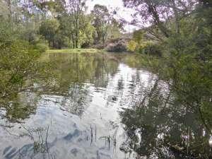 Balingup Pond